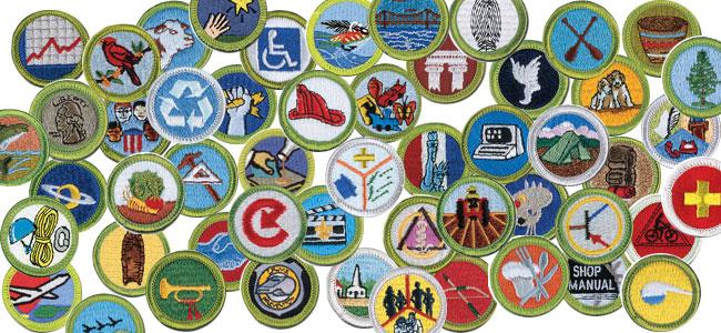 2014-merit-badge-image